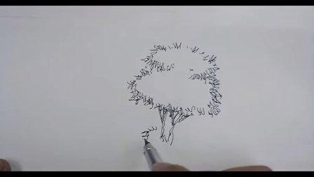 单体树的表现2 手绘教程 福州海派手绘培训机构 钢笔画 马克笔线稿