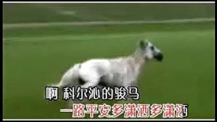 科尔沁民歌---科尔沁的骏马