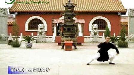 武当太极28式(2008年玉清观拍摄)