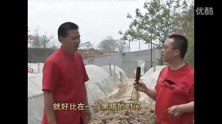 襄汾县绿源八八亩产万斤高淀粉红薯种植专业合作社