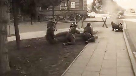 2008年东欧军迷聚会,重现二战东线苏、德战场2