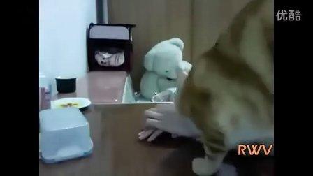 【优酷搞笑】主人,我饿了,你帮帮我