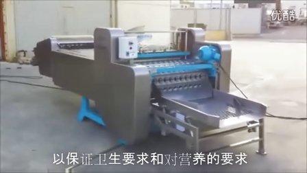 中文OMIP K10 和 K7 全自动黄桃去核机 TOMAS GUILLEN SL