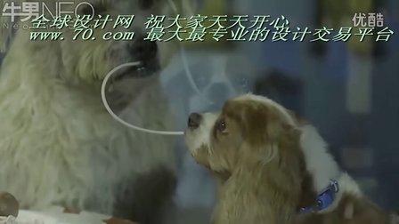 小姐与流氓 狗仔也早恋(清晰)70.com