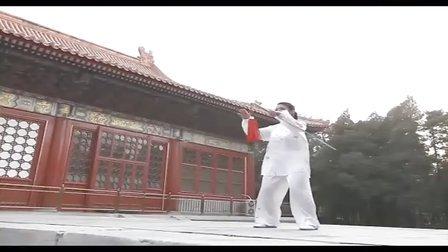 太极拳培训杨氏太极拳杨式太极剑