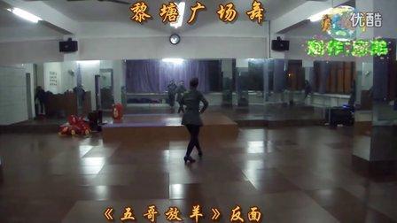 黎塘广场舞(泽美健身队)-《 五 哥 放 羊 》反面