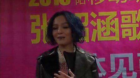 2013张韶涵襄阳歌友会