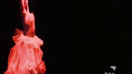 王新鹏 德国多特蒙德国立芭蕾舞剧院原创舞剧FANTASIA