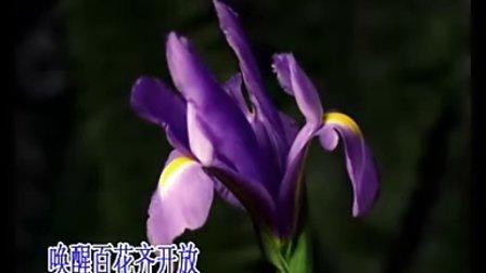 红梅赞—文安宁居士唱