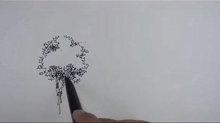 单体树的表现1 手绘教程 福州海派手绘培训机构 钢笔画 马克笔线稿