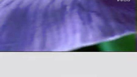 搜教程网-室内设计-制作水珠特效6