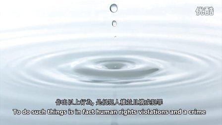 基本人权 - 中文繁体
