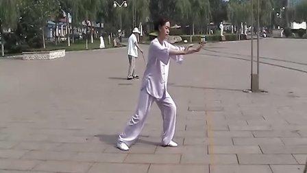 木易竹攸学习24太极