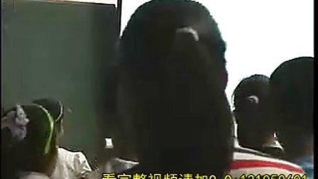 """众数(袁晓萍)第十批""""浙江省特级教师""""参评人选的课堂风采展示."""