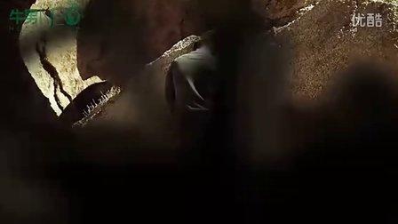 [www.33vcr.com]《骆驼蜘蛛》预告片(清晰)_1280x720_2.00M_h.264