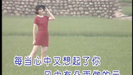 卓依婷 - 07 - 风中有朵雨做的云【DVD超清版】
