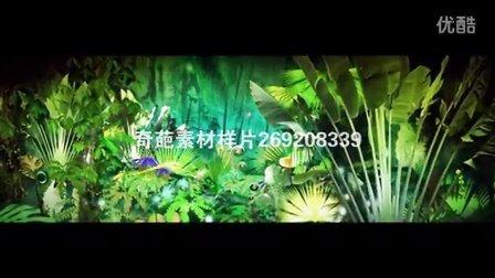 GQ094日不落 热带雨林 日不落LED背景素材 歌曲LED大屏幕视频背景