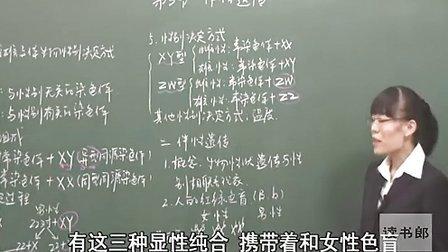黄冈中学人教版高中生物必修2必修2第2章第3节伴性遗传