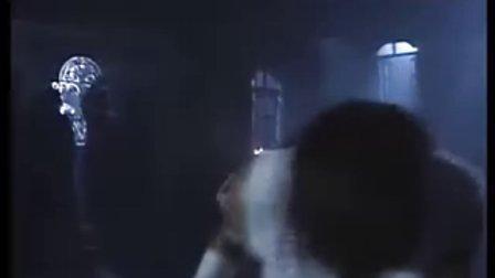 甄子丹VS泰拳2