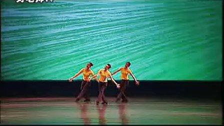 《萤火虫小夜曲》4-6级中国舞蹈考级教材 - 副本