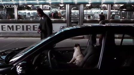 黑衣人2的狗狗