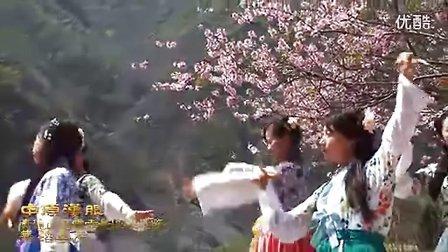 中原汉服青龙山慈云寺桃花节舞蹈《倾秀》
