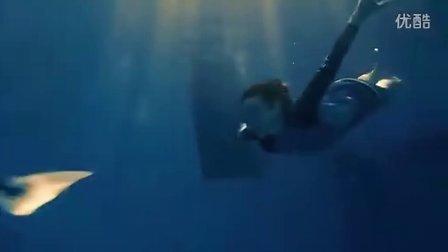 海豚与我畅游大海