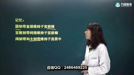 2014护士执业资格考试-妇产科护理学-01女性生殖系统解剖与生理