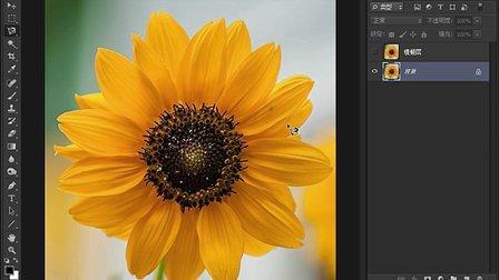不规则选区的建立-Photoshop cs6从头学新教程