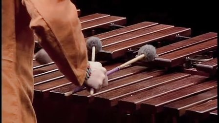 TED,Evelyn Glennie shows how to listen,2003