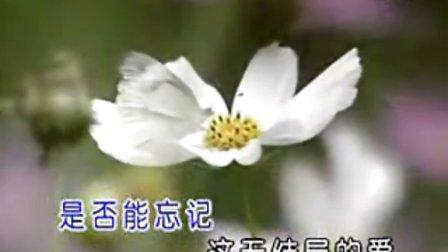 中国最纯   最好听   让人陶醉的老歌  (无结局的爱)甜美山妹