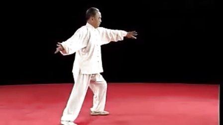 陈式太极拳83式教学_陈式太极拳八十三式动作分解教学1视频_新视网