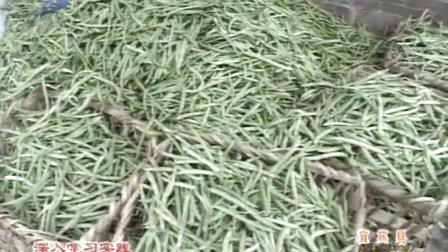 恒丰农业 媒体报道
