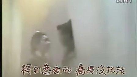 《日月神剑》主题曲(真真假假)