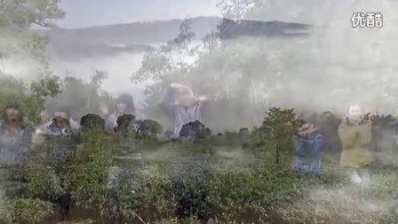 云南镇雄县坡头镇《采茶少女》——鸡鸣三省采景视频