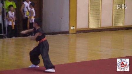 彭晓柏参加武术项目锦标赛双刀表演