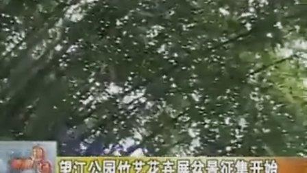望江公园竹艺花卉展盆景征集开始