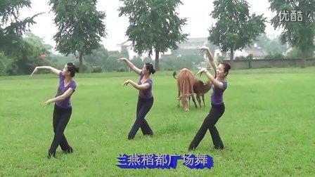 兰燕稻都广场舞 呼伦贝尔大草原