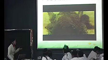 河南省生物优质课生态系统新课程高中生物名师课堂实录