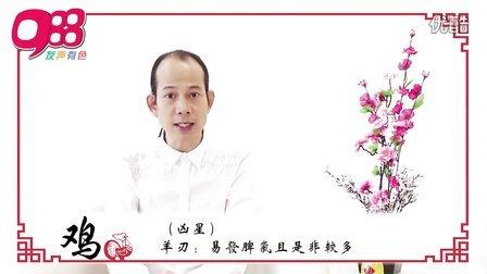 【鸡】988苏民峰师傅 马年12生肖运程