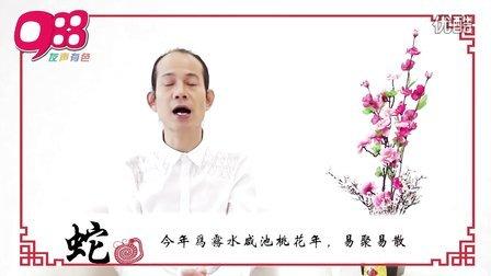【蛇】988苏民峰师傅 马年12生肖运程