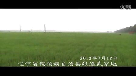 牡丹江市大地天成肥业有限公司--辽宁省夏季农化服务片段