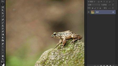 Photoshop 教程CS6专家讲堂视频-规则选择工具组