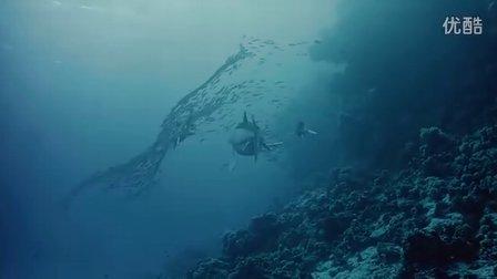 2010英法纪录片《雷克斯海:史前世界》  BD高清英语原音中英文双字幕无水印