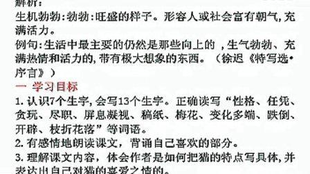 小学五年级语文【 猫】 课堂实录 教学视