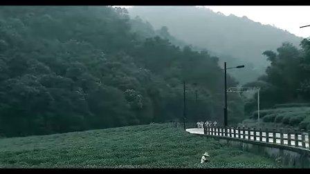梅溪湖国际新城5分钟视频