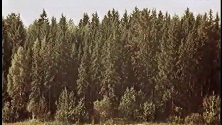 田野静悄悄(苏联影片《作曲家格林卡》片断)