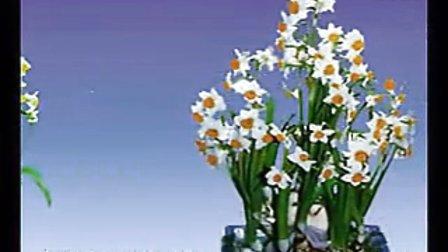 水仙在家里的养殖方法