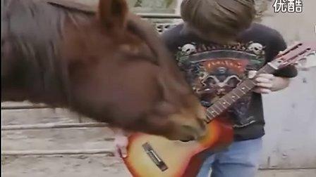 马与人合奏激情吉他 www.taowaw.com
