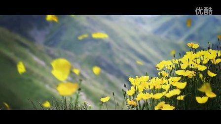 油画中的城市-中国塔城市宣传片